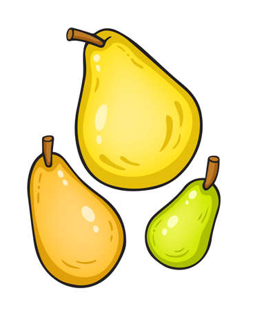 pears: Vector illustration isolated on white. Pears.