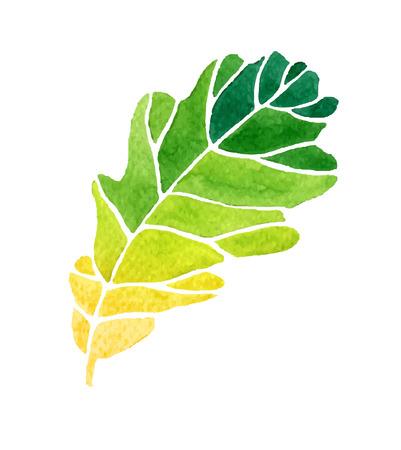 Ilustración vectorial de estilo de la acuarela de la hoja. Foto de archivo - 41929519