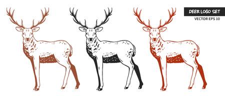 Vectorillustratie van herten op witte achtergrond. Stock Illustratie