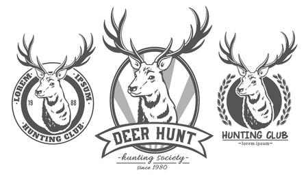 Conjunto de logotipos vectoriales de ciervos sobre fondo blanco. Foto de archivo - 85131362