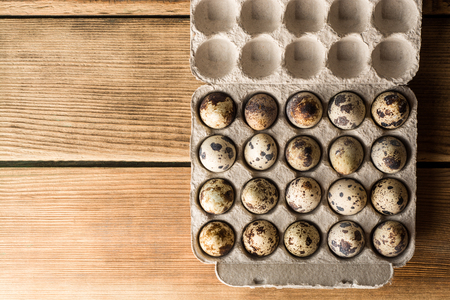 blotted: Quail eggs in cardboard packaging. Top view.