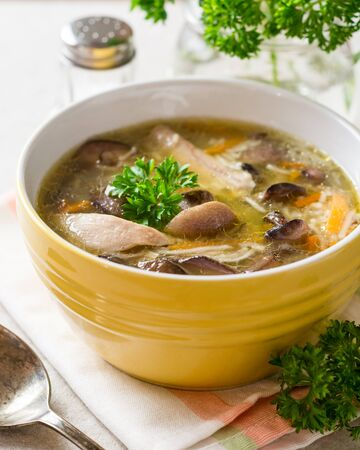 Chicken soup with mushrooms and noodles in bowl on gray stone background. Selective focus.