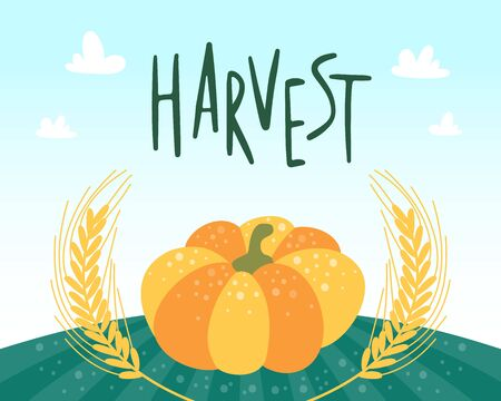 Pumpkin and ears of wheat on the green field. Harvest festival concept. Graphic vegetable design for cards menu banners and posters. Vector cartoon flat illustration. Vectores