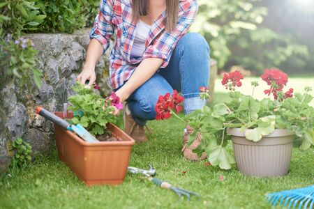 Blanke vrouw in werkkleding die bloemen plant in haar achtertuin. Stockfoto