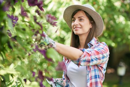Beautiful smiling Caucasian brunette in working clothes and with hat pruning flowers in her backyard. Stock Photo