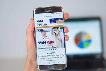 Barcelona / Spain 06 10 2019: Vin.com web site on mobile phone screen. Mobile version of Vin.com company web page on smartphone. Official web page of Vin.com.