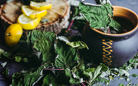 lemongrass tea: Dried leaves of currant in a clay pot, lemons, a season of colds