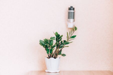 Ionizer stands on a shelf. Air purifier. Getting rid of dust, smog, viruses, fungi from the air. Good for illnes, be healthy, near green fresh plants. Selected focus 版權商用圖片