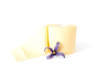 Yellow toilet paper roll with flower on white background.