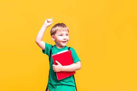 Back to school, little schoolboy posing on camera, the boy had an idea, big plans