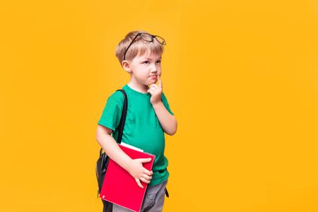 Back to school, little schoolboy posing on camera, the boy thought Banque d'images - 150098727