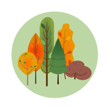 Collection or set of different orange and green autumn trees in light green circle in the center, vector. Banque d'images - 150368971