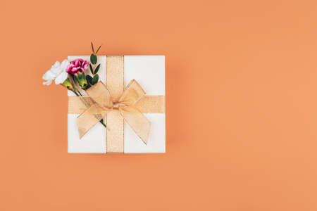 Two dianthus are inserted into a beautiful gift tied with a ribbon, a beautiful bow on the box, a gift on an orange background.