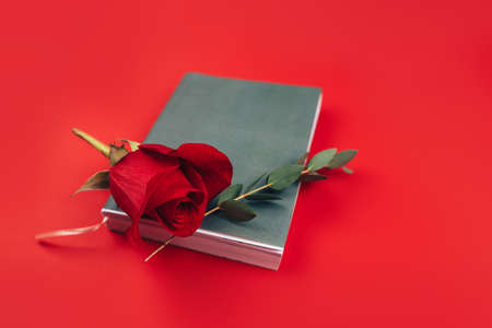 Beautiful red rose with a twig with lying leaves on a black notebook, a gift for any occasion, a gift to your loved one on a red background. 版權商用圖片