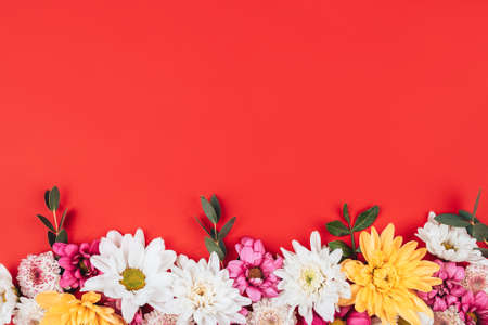 Beautiful frame of flowers on a red background, free space in the middle for the text with congratulations. 版權商用圖片