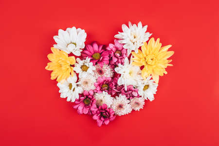 Beautiful mix of different flowers laid out in the shape of a heart on a red background, free space for text, advertising a healthy lifestyle.