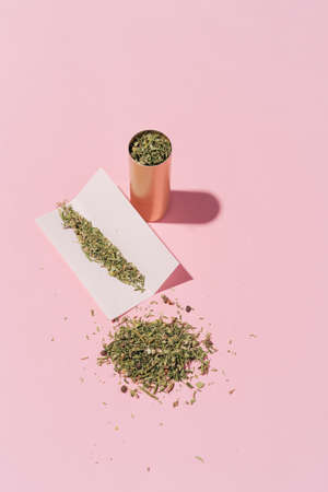 hipster photo of can, paper and dry Cannabis leafs on pink background with hard shapes, layout. Banque d'images