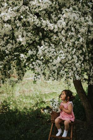 Asian girl sitting on stepladder under blossoming apple tree.