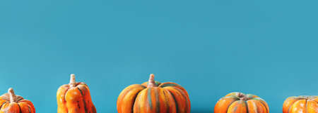 Horizontal photo with pumpkins in front of blue background. Banque d'images