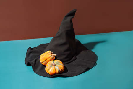Black witch hat with pumpkins on blue background.