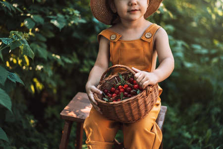 Little girl in yellow overalls and straw hat holding basket of cherries.