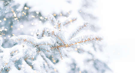 Christmas tree background outdoor with snow, lights bokeh around, and snow falling, Christmas atmosphere. Banque d'images