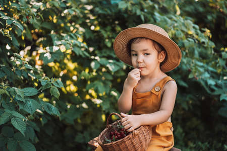 Little girl in yellow jumpsuit and straw hat eats cherries.