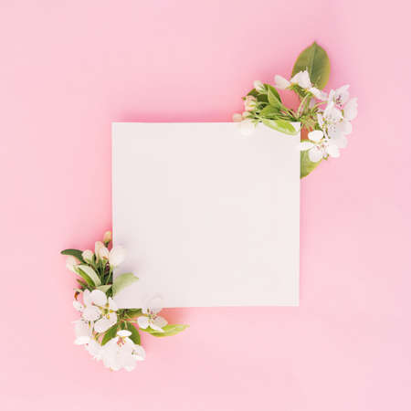 White square with white flowers and green leaves on a pink background.