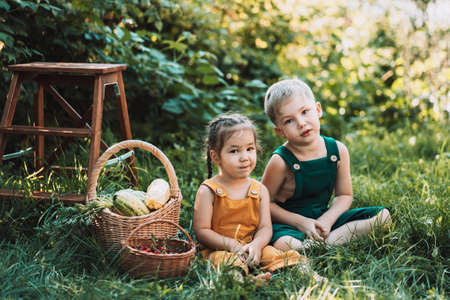 Different blonde brother and brunette sister in overalls are sitting on the grass next to basket of vegetables.