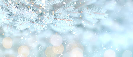 Long banner of white snowy Christmas tree background outdoor, lights bokeh around, and snow falling, Christmas atmosphere. Banque d'images