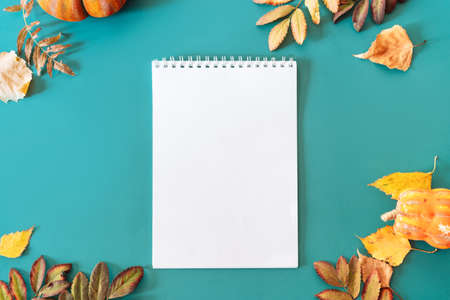 Blank notepad sheet on cyan background with dry leaves.