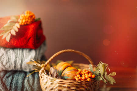 Wicker basket with autumn harvest on the background of knitted sweaters of different colors