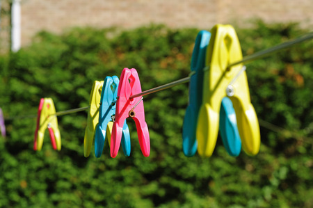 Color clothespegs on washline in the garden
