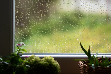 is raining: rain outside the window