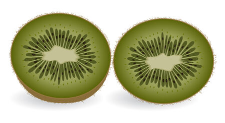 fruitful: Kiwi slices isolated on a white background.  Vector illustration.