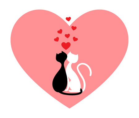 true love: Black cat and white cat, side by side in pink heart