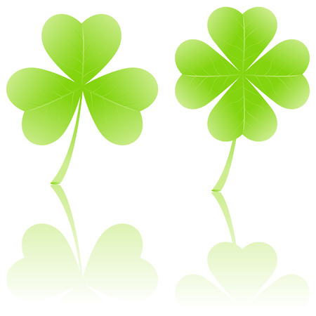three leaves: Four-leaf clover and shamrock, symbols of luck. Isolated on white.  illustration