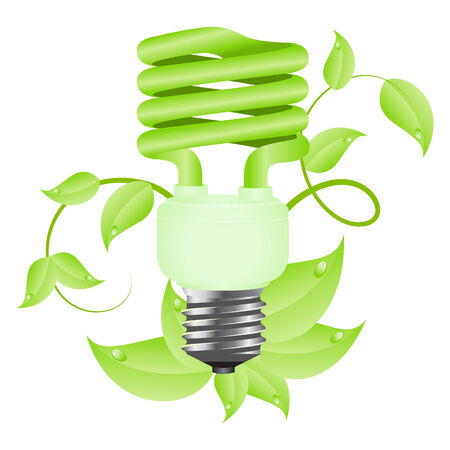 Green light floral bulb with leafs. Isolated on white background. illustration. Stock Vector - 6399642