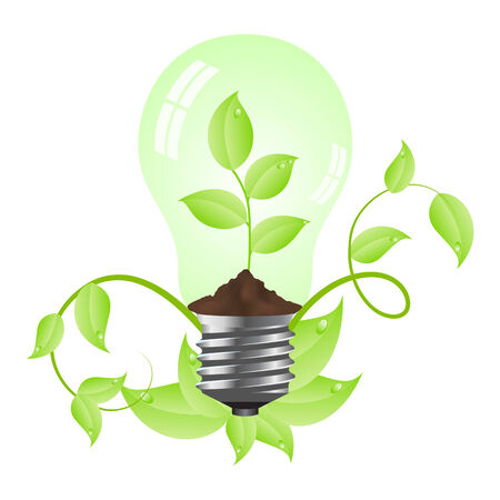 Tungsten light bulb with plant inside. Isolated on white background. illustration. Stock Vector - 6399650