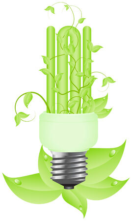 Green light floral bulb with leafs. Isolated on white background. illustration. Stock Vector - 6450013