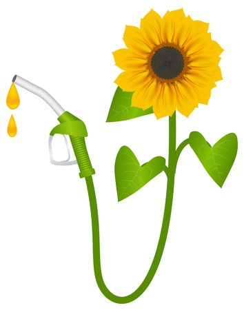 Suflower and fuel pump, biofuel consept. Vector illustration, isolated o a white
