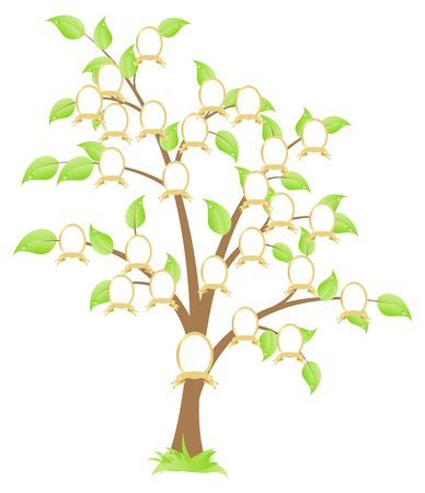 Genealogical family tree. Green tree.