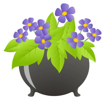 plant pot: Potted violet in a kettle.  illustration, isolated on a white.