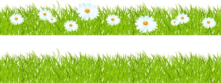 Seamless horizontal mount, grass with camomiles.  Stock Vector - 7234119