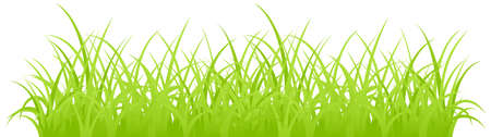 Fragment of a green grass. Vector illustration, isolated on a white. Stock Illustration - 7723182