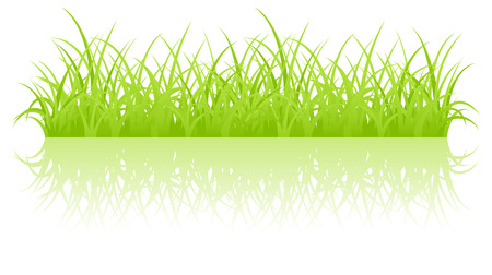 Fragment of a green grass Stock Vector - 8117449