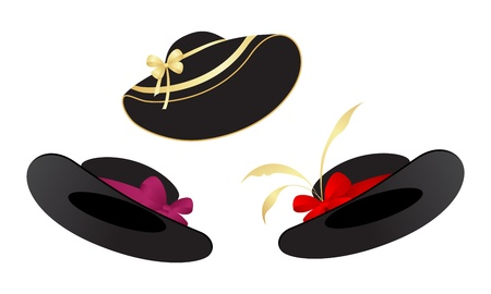 hat with feather: Black ladys hats isolated on a white background. Vector illustration. Illustration