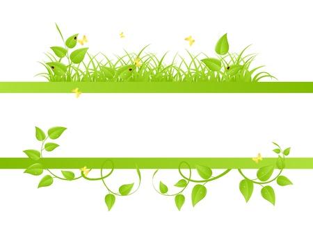 crecimiento planta: Fondo floral con mariquitas y mariposas. Ilustraci�n vectorial. Vectores