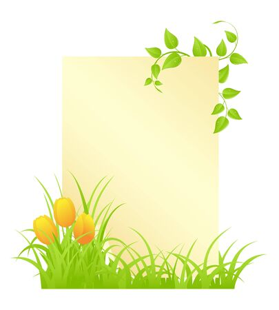 tulips in green grass: Blank with tulips and grass. Vector illustration, isolated on a white. Illustration
