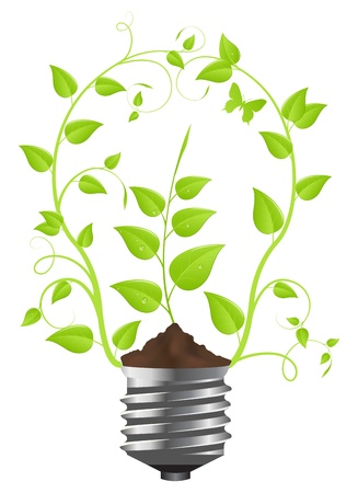 energy supply: Light bulb of green plants. Isolated on white background. Vector illustration.